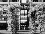 IULM Residence - Milano. Il Comparto C del Fondo Social & Human Purpose è destinato ai Campus Universitari
