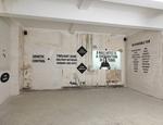 Il progetto di Chiara Fumai per il Premio Furla 2013